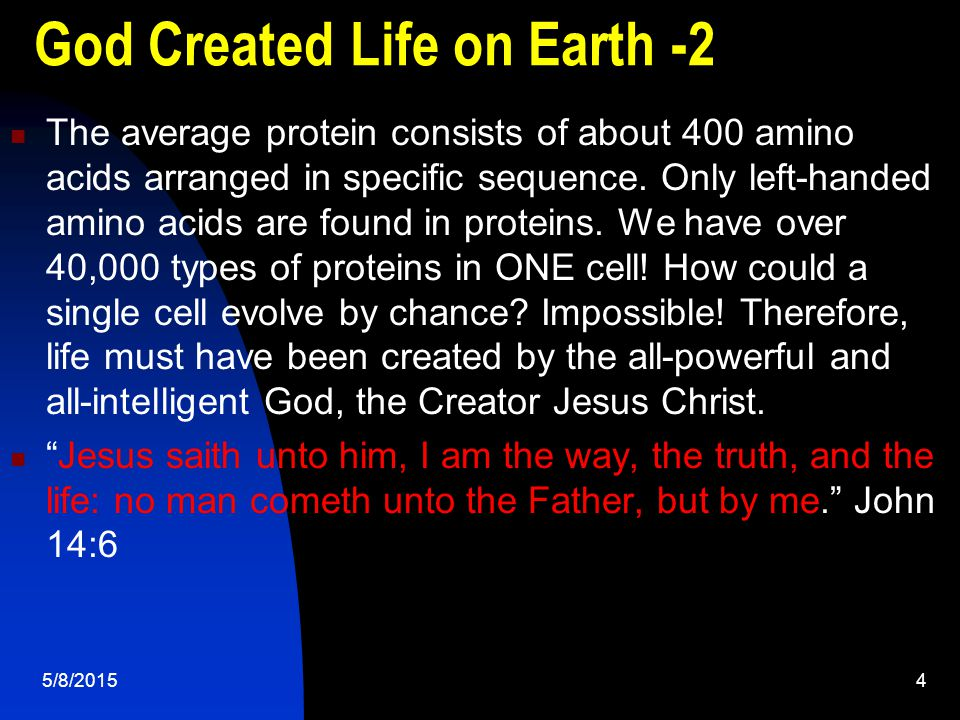 5/8/20154 God Created Life on Earth -2 The average protein consists of about 400 amino acids arranged in specific sequence.