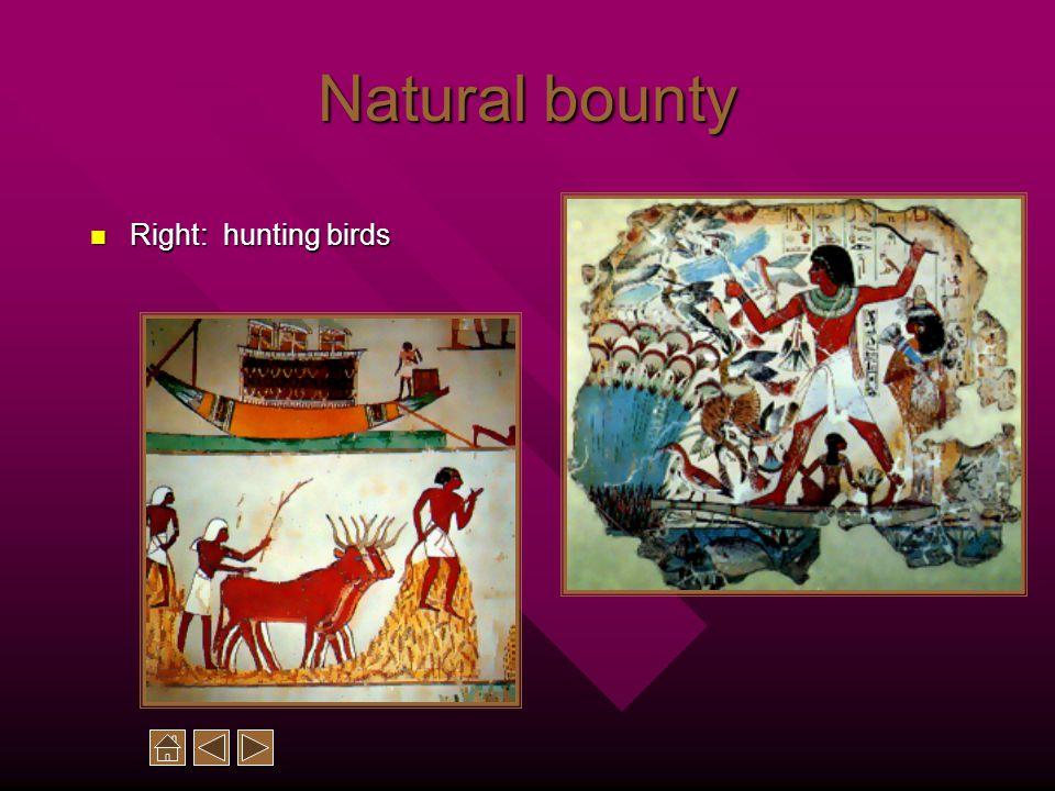 Natural bounty Right: hunting birds Right: hunting birds