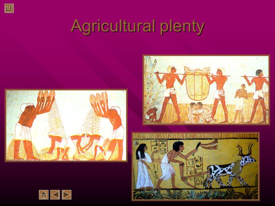 Agricultural plenty