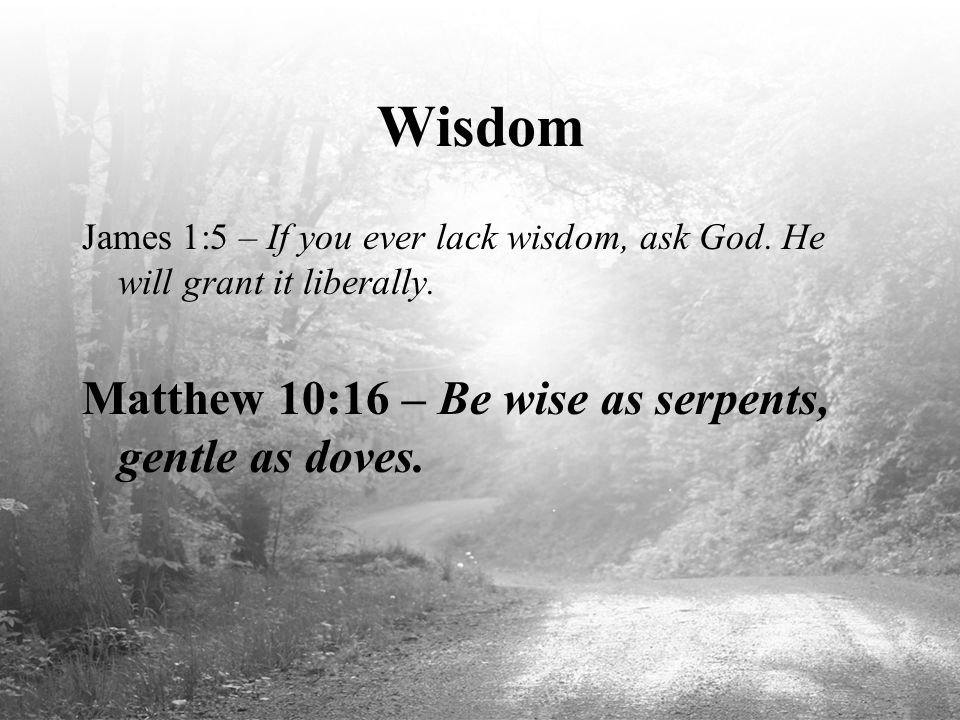 Wisdom James 1:5 – If you ever lack wisdom, ask God. He will grant it liberally. Matthew 10:16 – Be wise as serpents, gentle as doves.