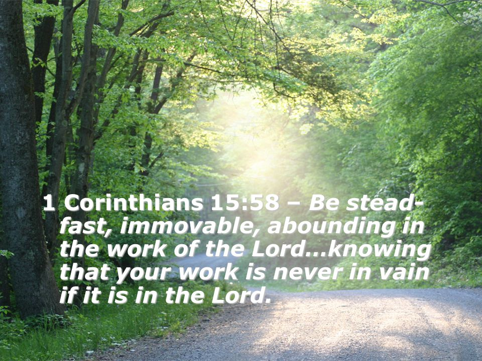 1 Corinthians 15:58 – Be stead- fast, immovable, abounding in the work of the Lord…knowing that your work is never in vain if it is in the Lord.