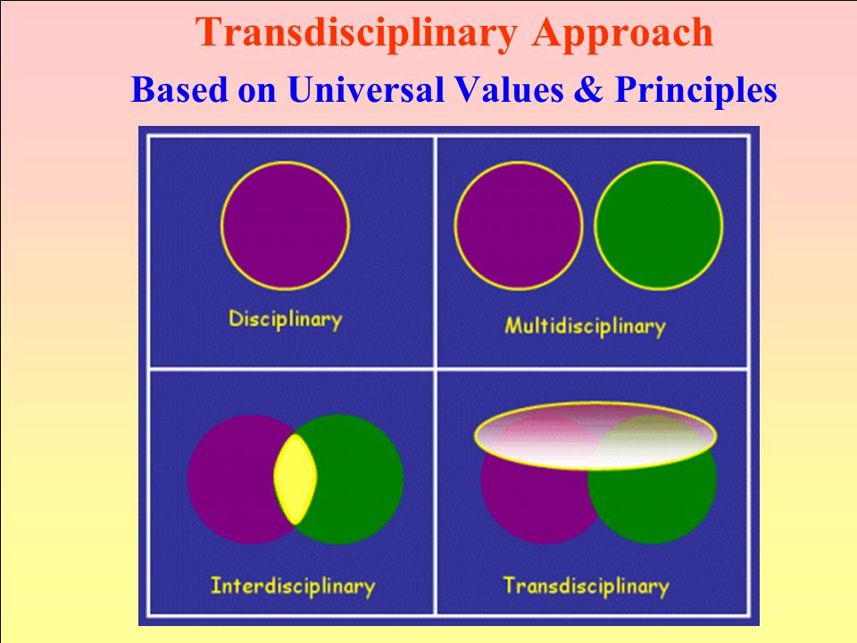 Transdisciplinary Approach Based on Universal Values & Principles