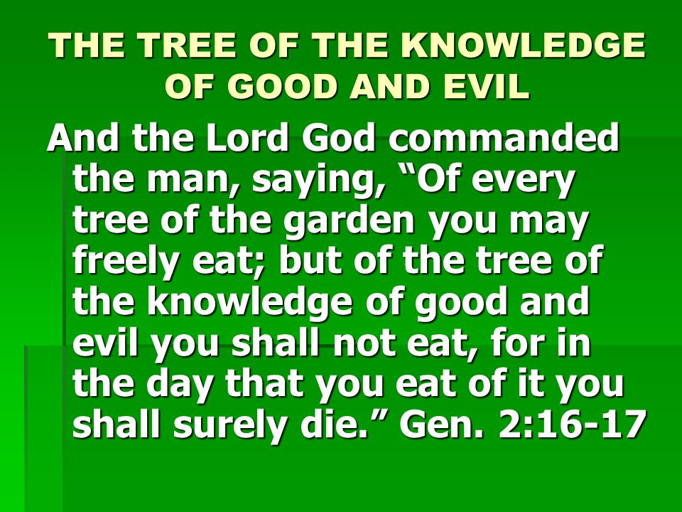 THE TREE OF THE KNOWLEDGE OF GOOD AND EVIL And the Lord God commanded the man, saying, Of every tree of the garden you may freely eat; but of the tree of the knowledge of good and evil you shall not eat, for in the day that you eat of it you shall surely die. Gen.