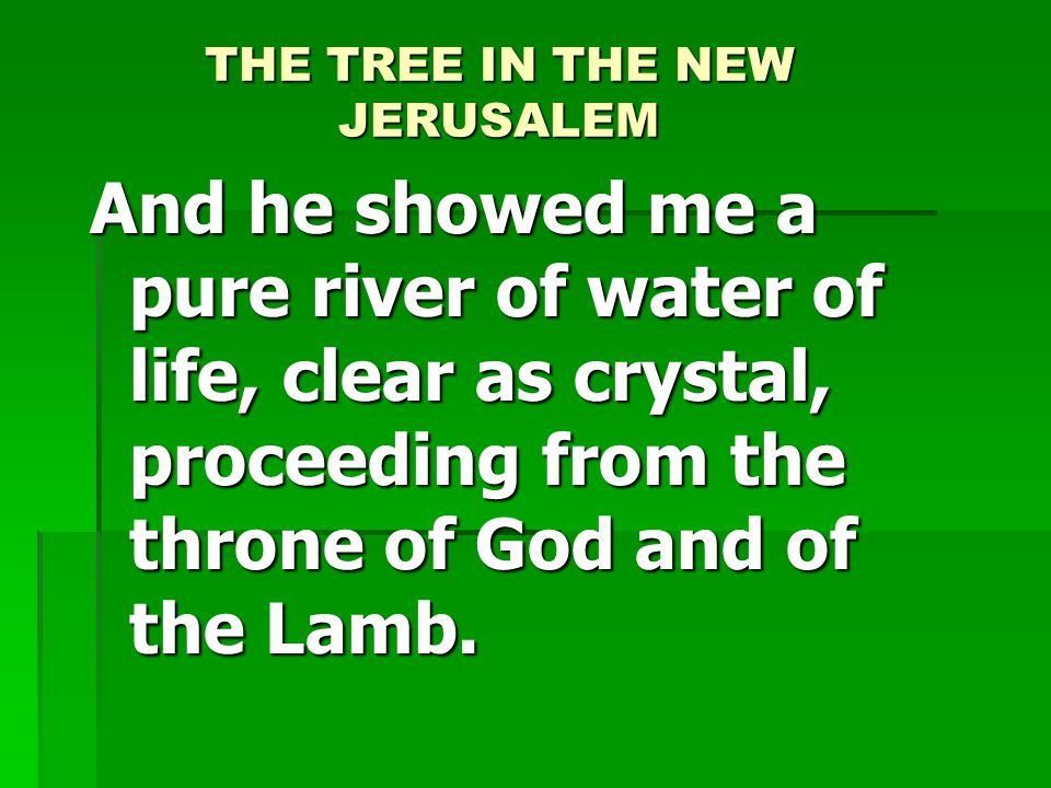 THE TREE IN THE NEW JERUSALEM And he showed me a pure river of water of life, clear as crystal, proceeding from the throne of God and of the Lamb.