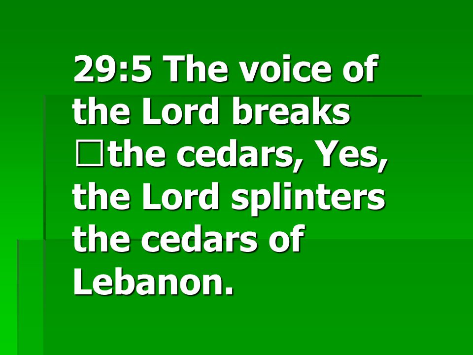 29:5 The voice of the Lord breaks the cedars, Yes, the Lord splinters the cedars of Lebanon.