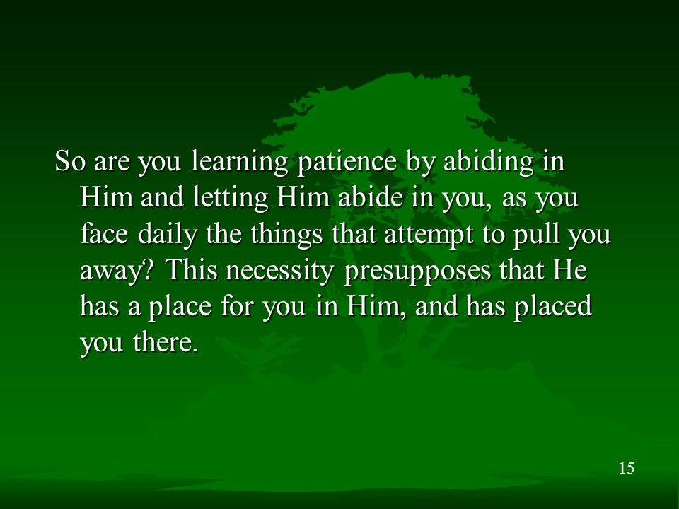 15 So are you learning patience by abiding in Him and letting Him abide in you, as you face daily the things that attempt to pull you away.