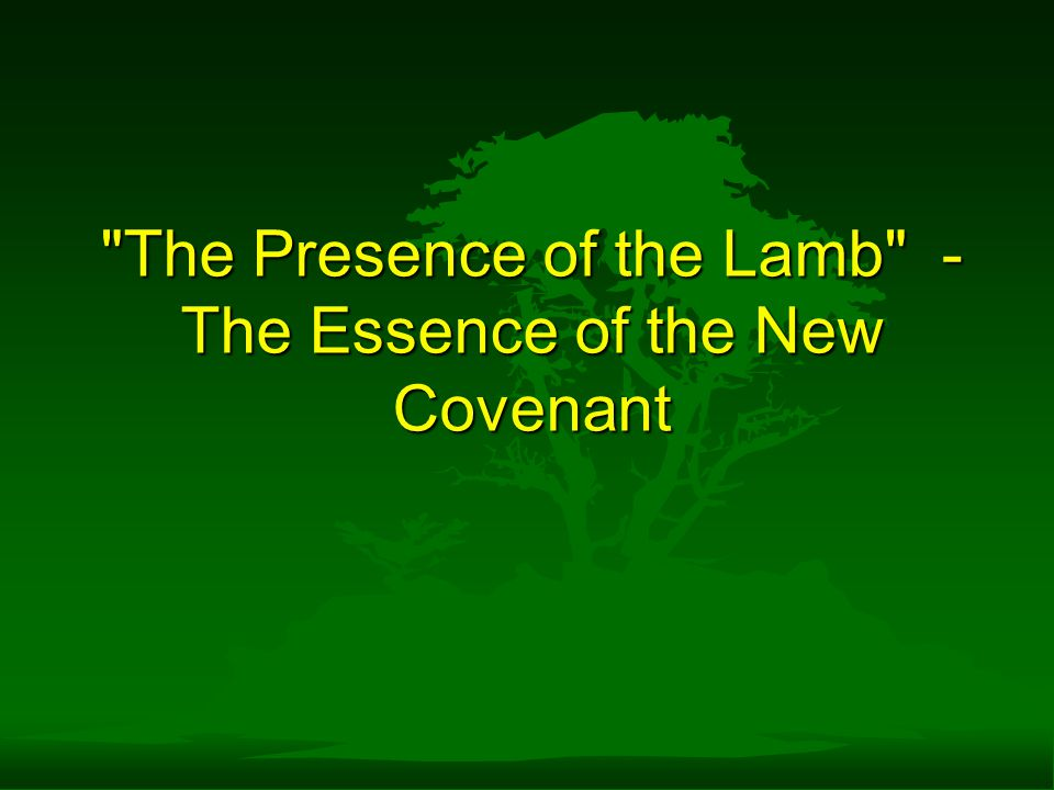 The Presence of the Lamb - The Essence of the New Covenant