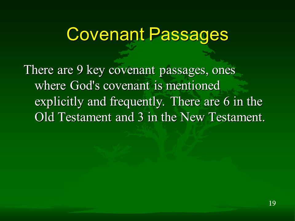 19 Covenant Passages There are 9 key covenant passages, ones where God s covenant is mentioned explicitly and frequently.