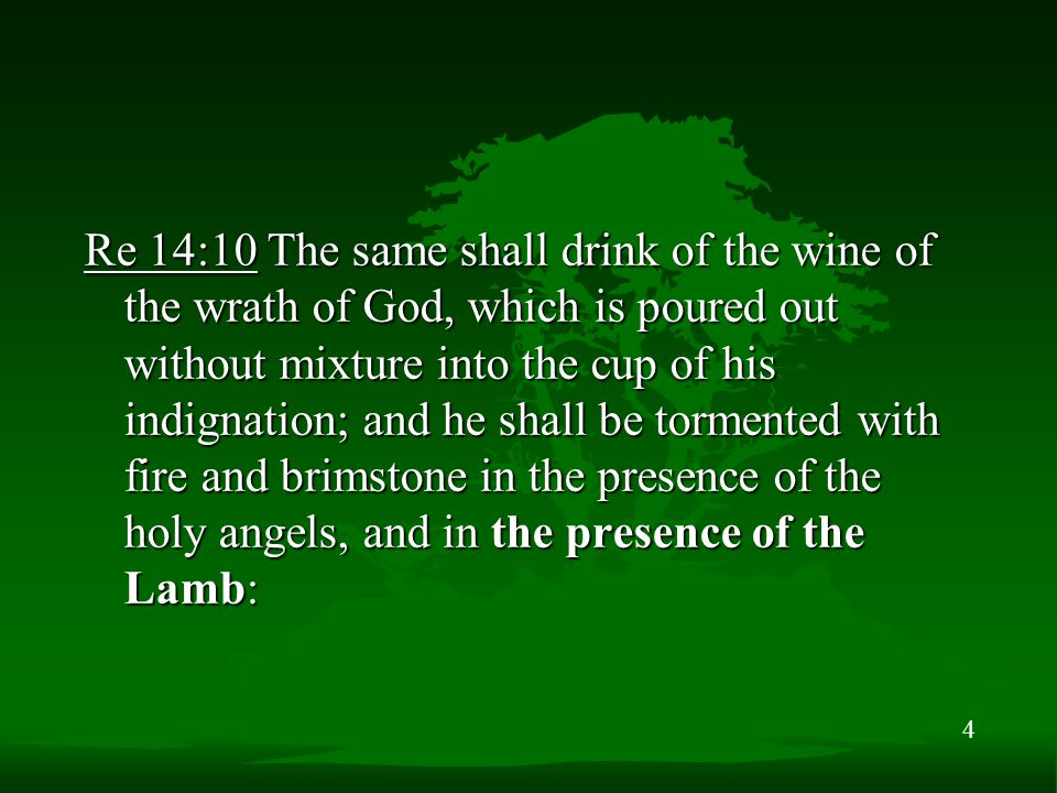 4 Re 14:10 The same shall drink of the wine of the wrath of God, which is poured out without mixture into the cup of his indignation; and he shall be tormented with fire and brimstone in the presence of the holy angels, and in the presence of the Lamb: