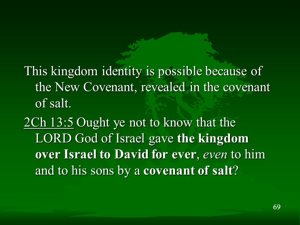 69 This kingdom identity is possible because of the New Covenant, revealed in the covenant of salt. 2Ch 13:5 Ought ye not to know that the LORD God of