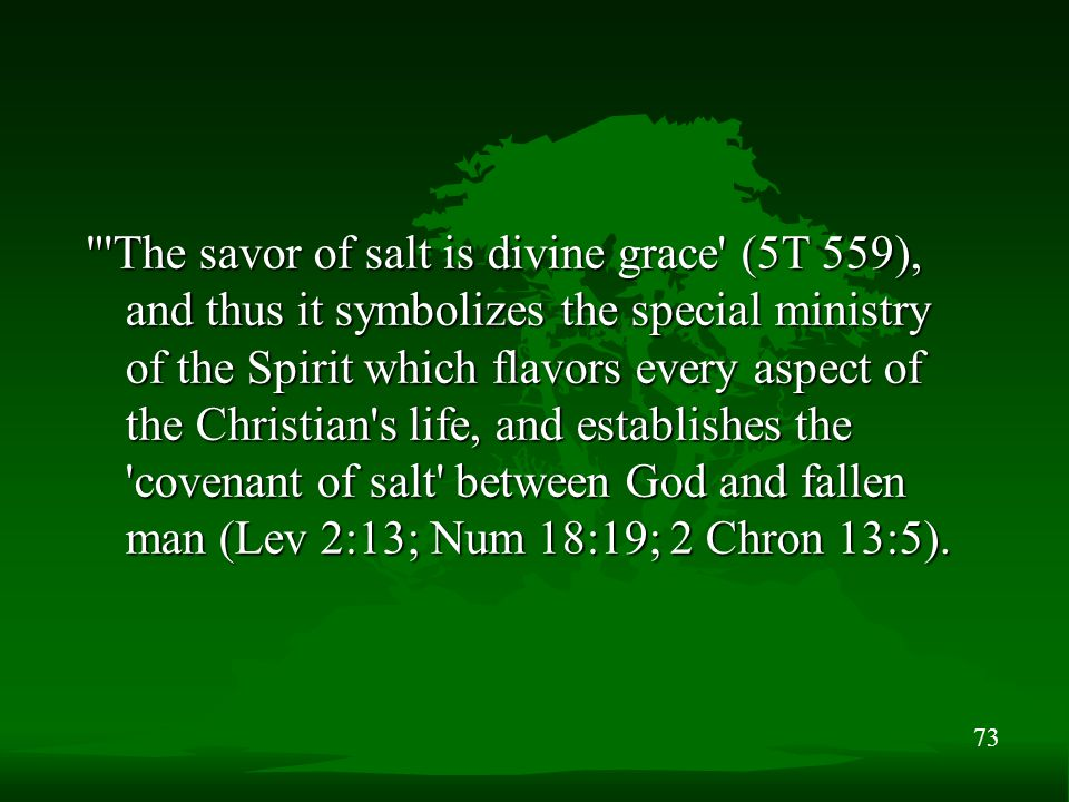 73 The savor of salt is divine grace (5T 559), and thus it symbolizes the special ministry of the Spirit which flavors every aspect of the Christian s life, and establishes the covenant of salt between God and fallen man (Lev 2:13; Num 18:19; 2 Chron 13:5).