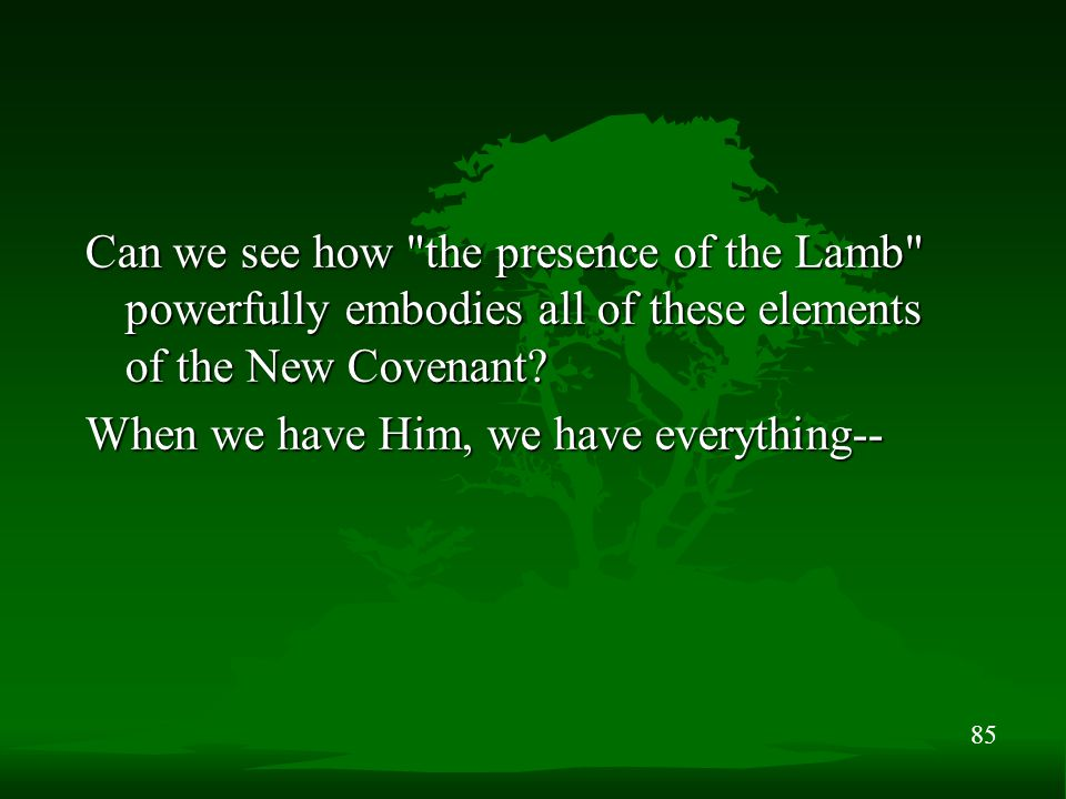 85 Can we see how the presence of the Lamb powerfully embodies all of these elements of the New Covenant.