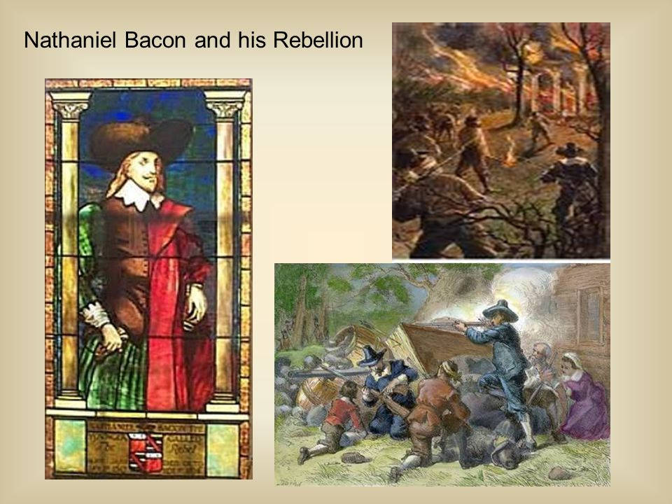 Nathaniel Bacon and his Rebellion