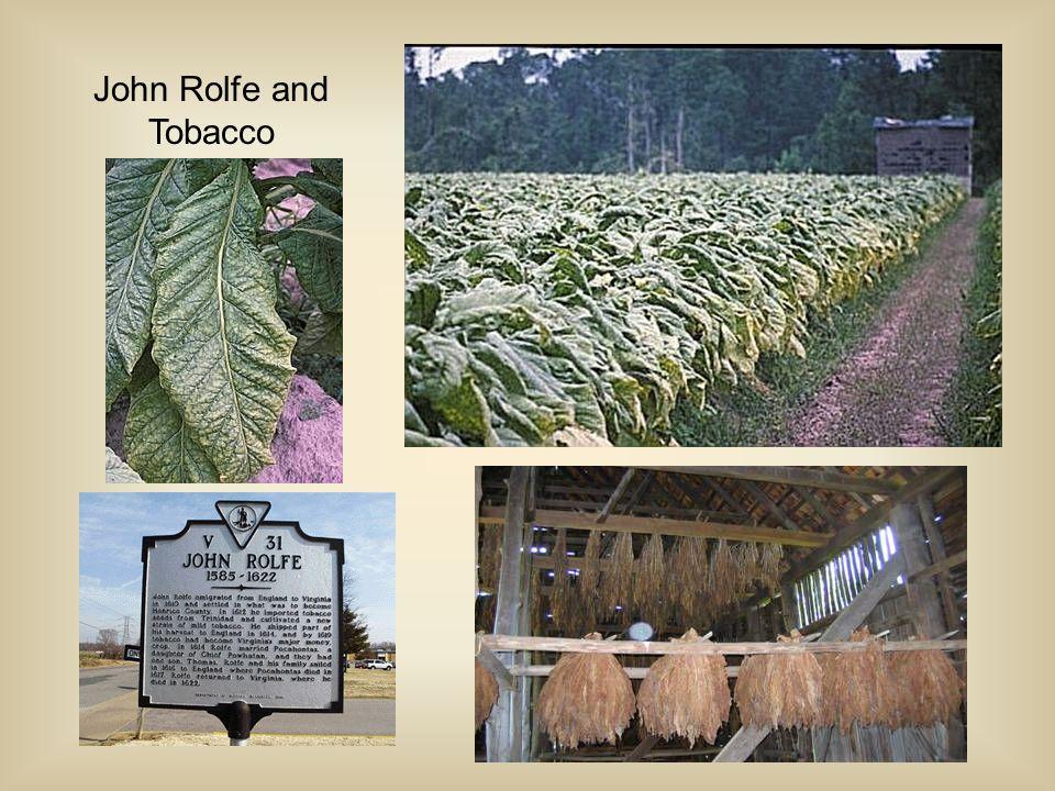 Sir Walter Raleigh & Tobacco Europe's Tobacco Craze