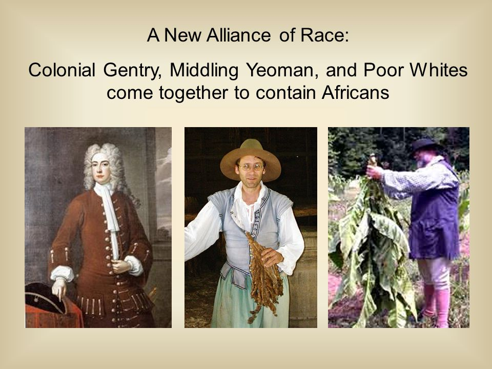 A New Alliance of Race: Colonial Gentry, Middling Yeoman, and Poor Whites come together to contain Africans