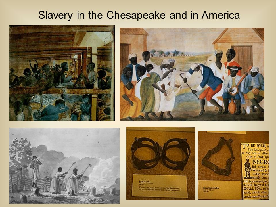 Slavery in the Chesapeake and in America