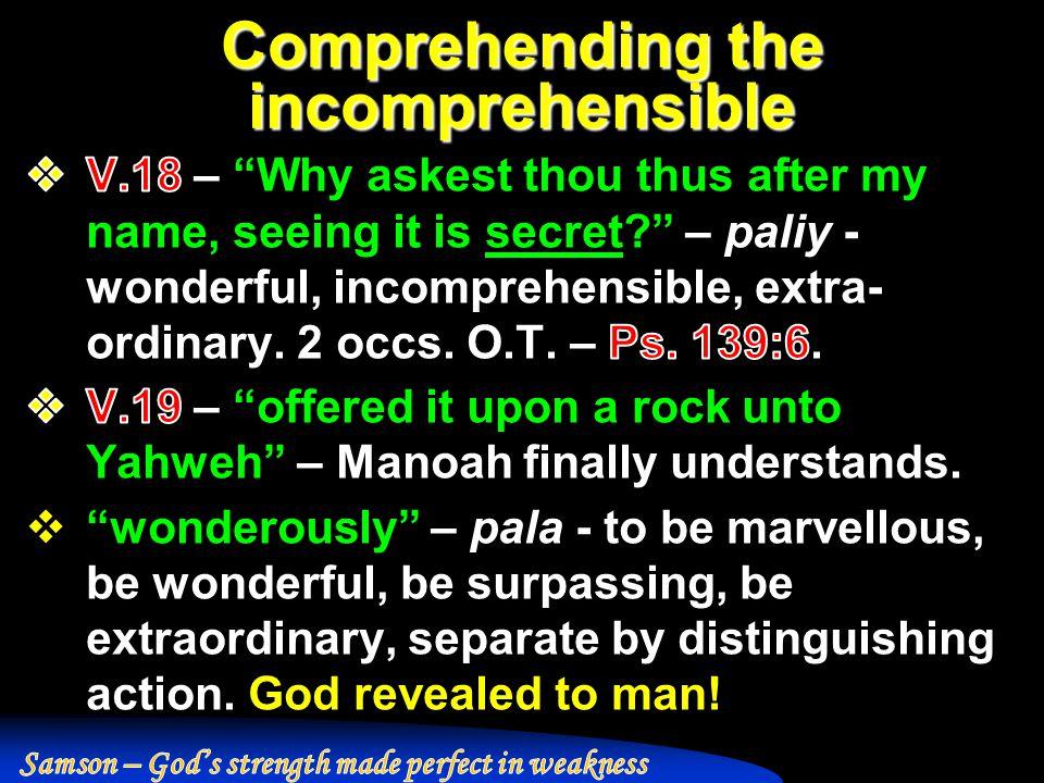 Comprehending the incomprehensible