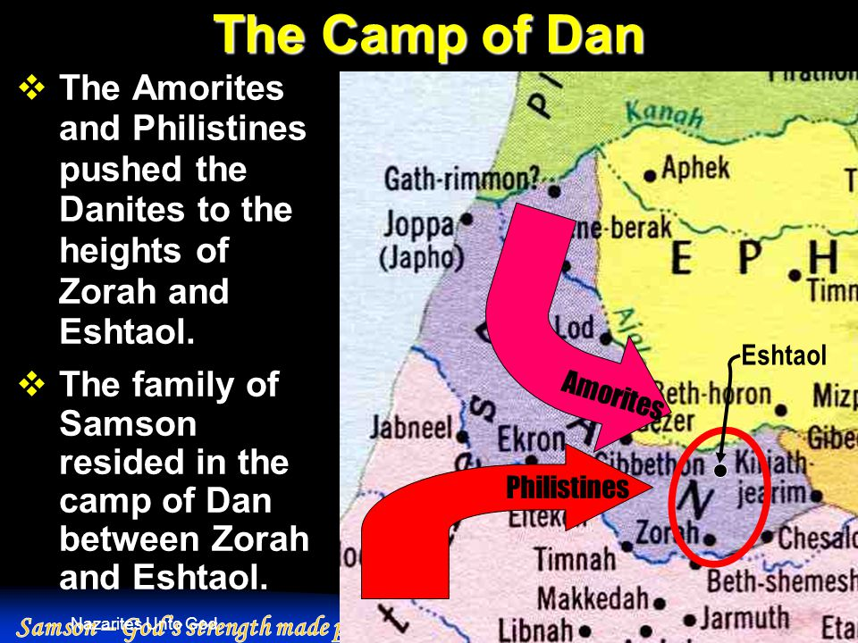 Nazarites Unto God The Camp of Dan  The Amorites and Philistines pushed the Danites to the heights of Zorah and Eshtaol.