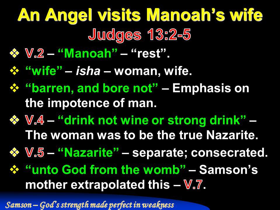 An Angel visits Manoah's wife