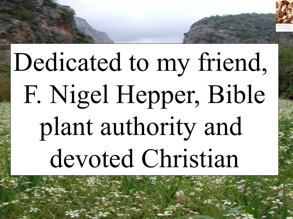 Dedicated to my friend, F. Nigel Hepper, Bible plant authority and devoted Christian