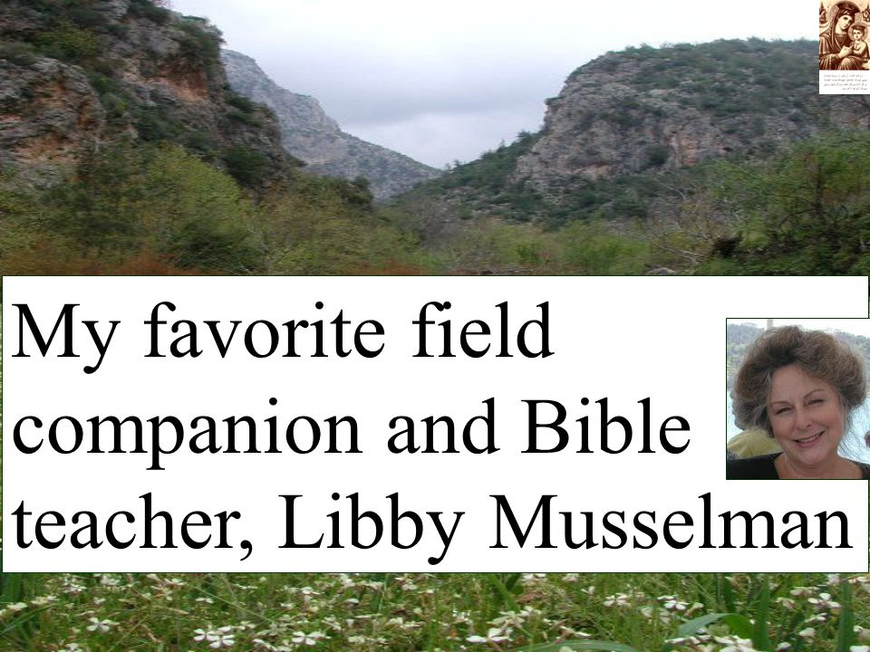 My favorite field companion and Bible teacher, Libby Musselman