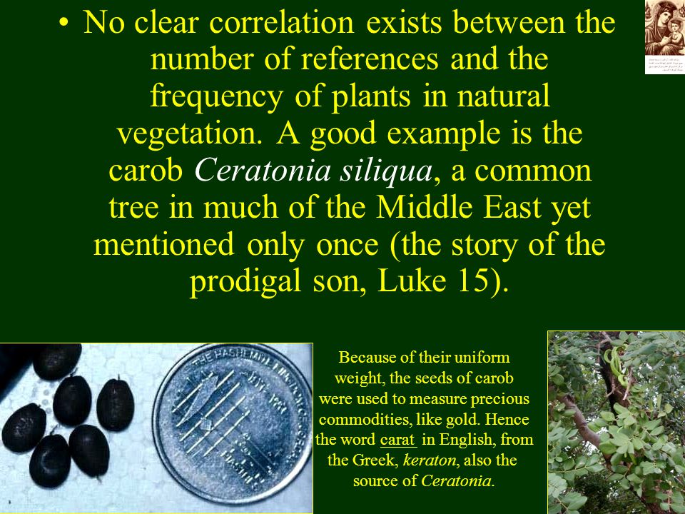 No clear correlation exists between the number of references and the frequency of plants in natural vegetation. A good example is the carob Ceratonia