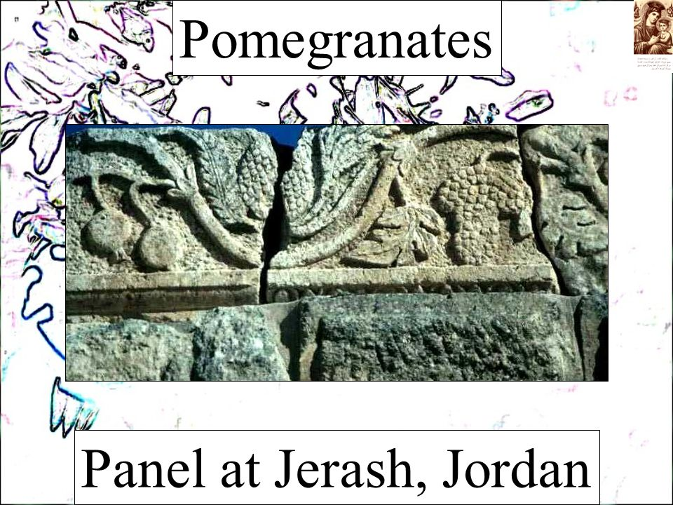 Pomegranates Panel at Jerash, Jordan
