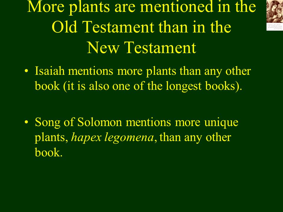 More plants are mentioned in the Old Testament than in the New Testament Isaiah mentions more plants than any other book (it is also one of the longes