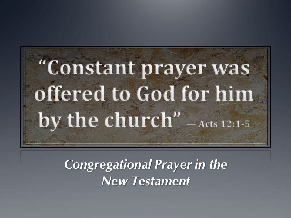 Different types of prayers can be made… A doration or Praise (Acts 4:24-30; Heb.