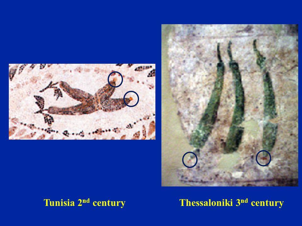 Tunisia 2 nd centuryThessaloniki 3 nd century