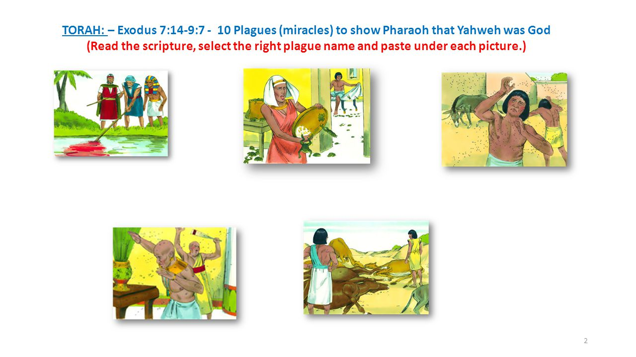 TORAH: – Exodus 7:14-9:7 - 10 Plagues (miracles) to show Pharaoh that Yahweh was God (Read the scripture, select the right plague name and paste under each picture.) 2
