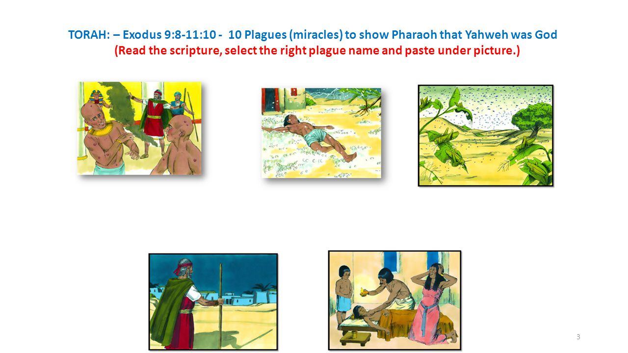 TORAH: – Exodus 9:8-11:10 - 10 Plagues (miracles) to show Pharaoh that Yahweh was God (Read the scripture, select the right plague name and paste under picture.) 3