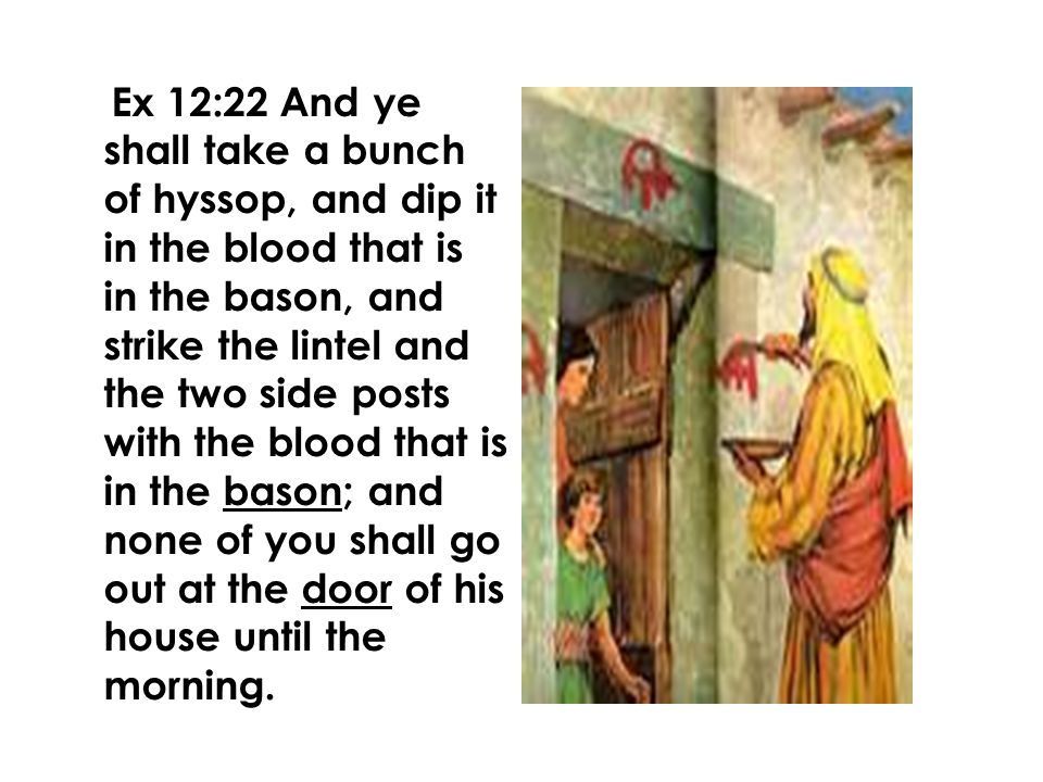 Ex 12:22 And ye shall take a bunch of hyssop, and dip it in the blood that is in the bason, and strike the lintel and the two side posts with the blood that is in the bason; and none of you shall go out at the door of his house until the morning.
