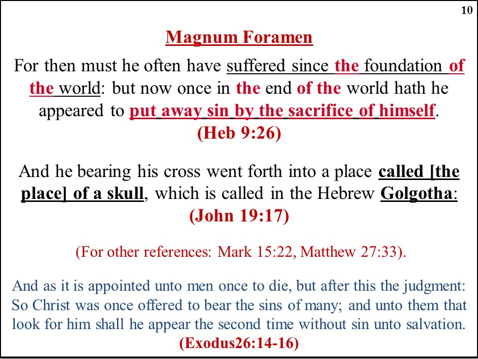 Magnum Foramen For then must he often have suffered since the foundation of the world: but now once in the end of the world hath he appeared to put away sin by the sacrifice of himself.
