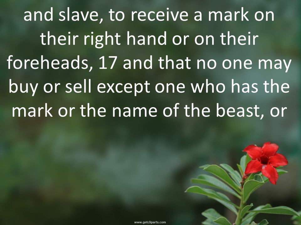 and slave, to receive a mark on their right hand or on their foreheads, 17 and that no one may buy or sell except one who has the mark or the name of the beast, or