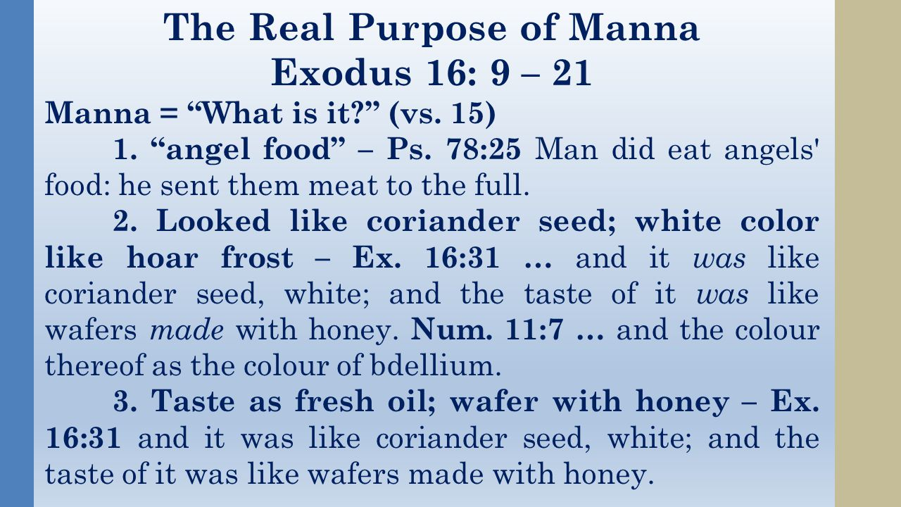 The Real Purpose of Manna Exodus 16: 9 – 21 Manna = What is it (vs.