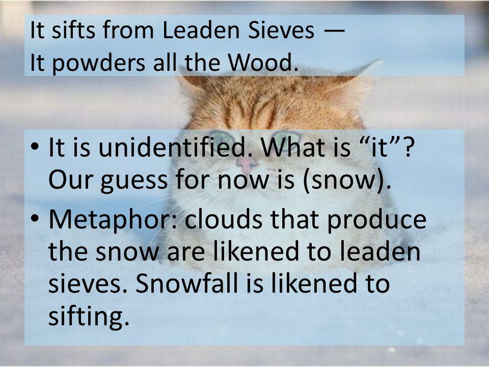 Sound This poem utilizes assonance, consonance, and alliteration.