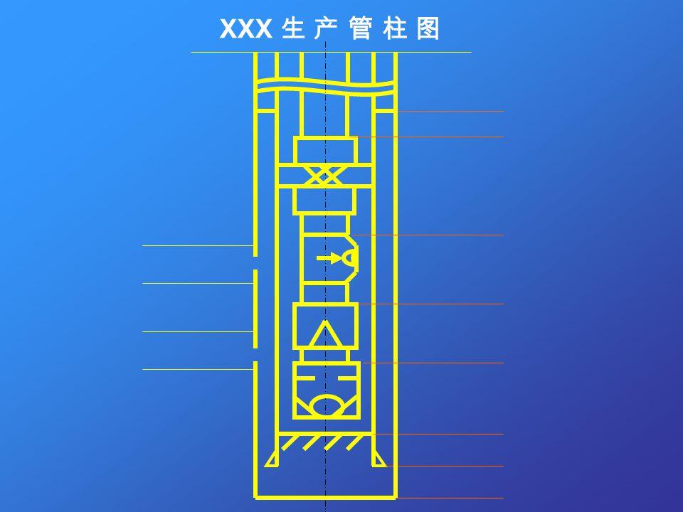 XXX 生 产 管 柱 图