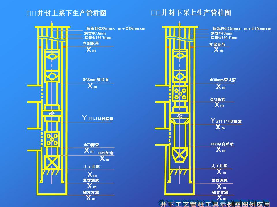 ⅹⅹ井封上采下生产管柱图 ⅹⅹ井封下采上生产管柱图 抽油杆 Φ22mm× m + Φ19mm×m XmXm Y 211-114 封隔器 XmXm 油管 Φ73mm 套管 Φ139.7mm 水泥返高 XmXm Φ38mm 管式泵 XmXm Φ73 筛管 XmXm XmXm Φ89 导向丝堵 XmXm 人工井底 套管深度 XmXm 钻井井深 XmXm
