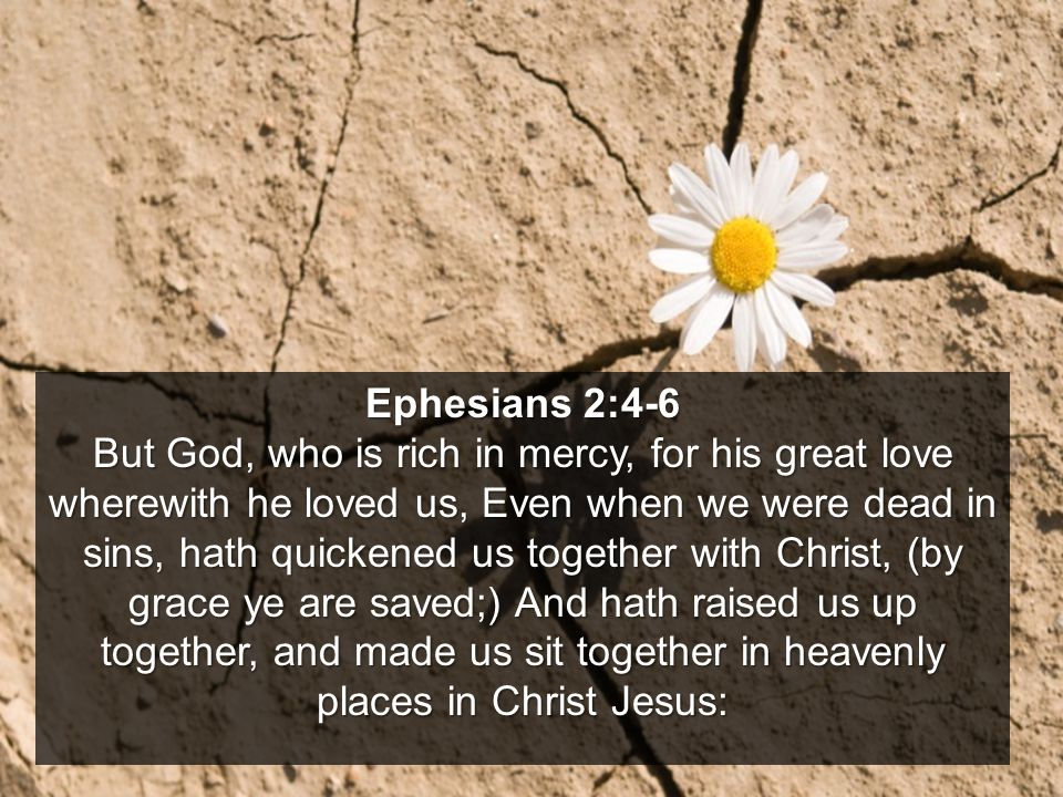 Ephesians 2:4-6 But God, who is rich in mercy, for his great love wherewith he loved us, Even when we were dead in sins, hath quickened us together with Christ, (by grace ye are saved;) And hath raised us up together, and made us sit together in heavenly places in Christ Jesus: