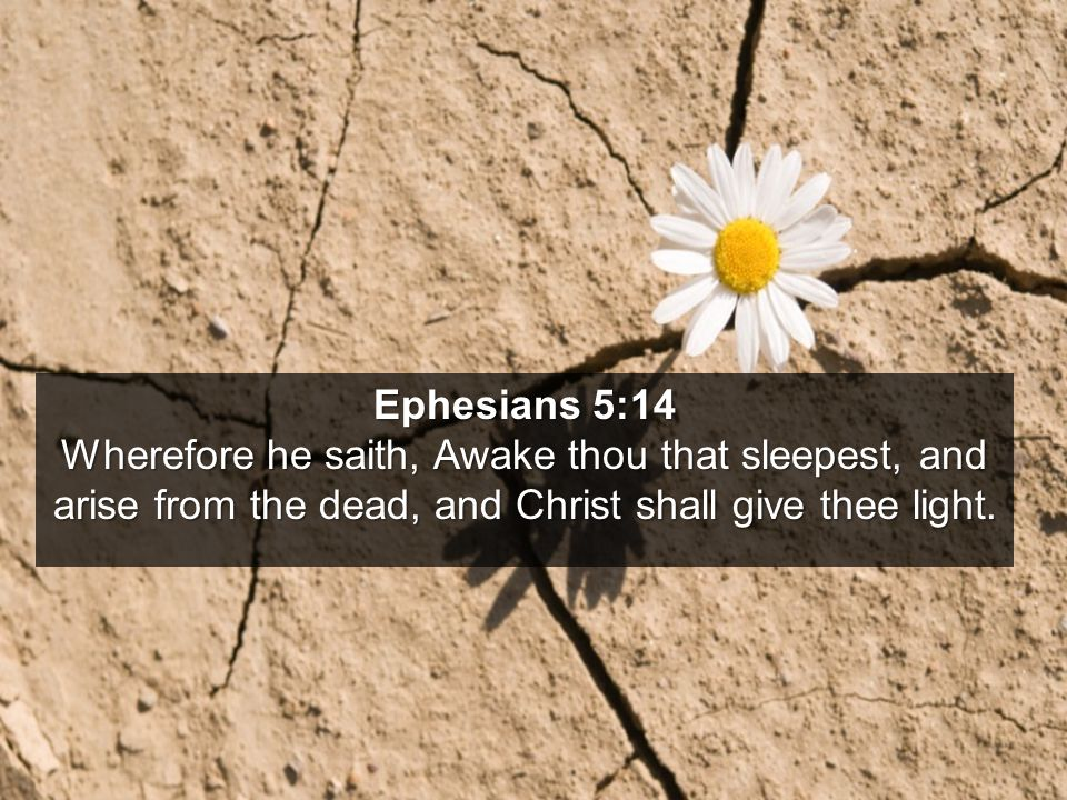 Ephesians 5:14 Wherefore he saith, Awake thou that sleepest, and arise from the dead, and Christ shall give thee light.