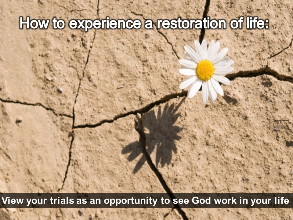 View your trials as an opportunity to see God work in your life