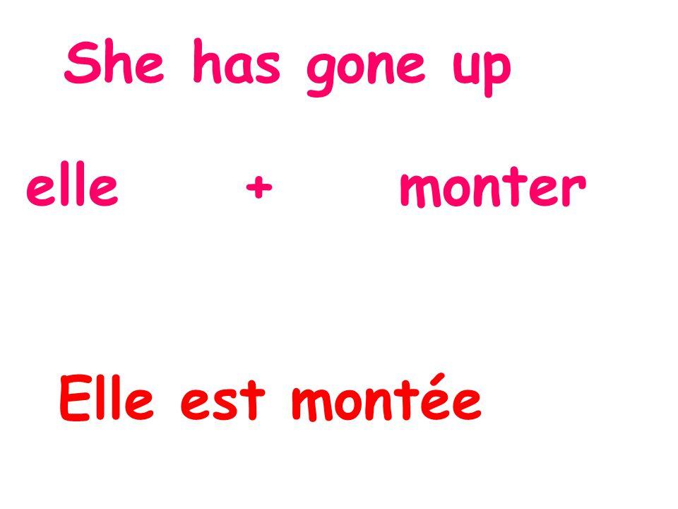 She has gone up elle + monter Elle est montée