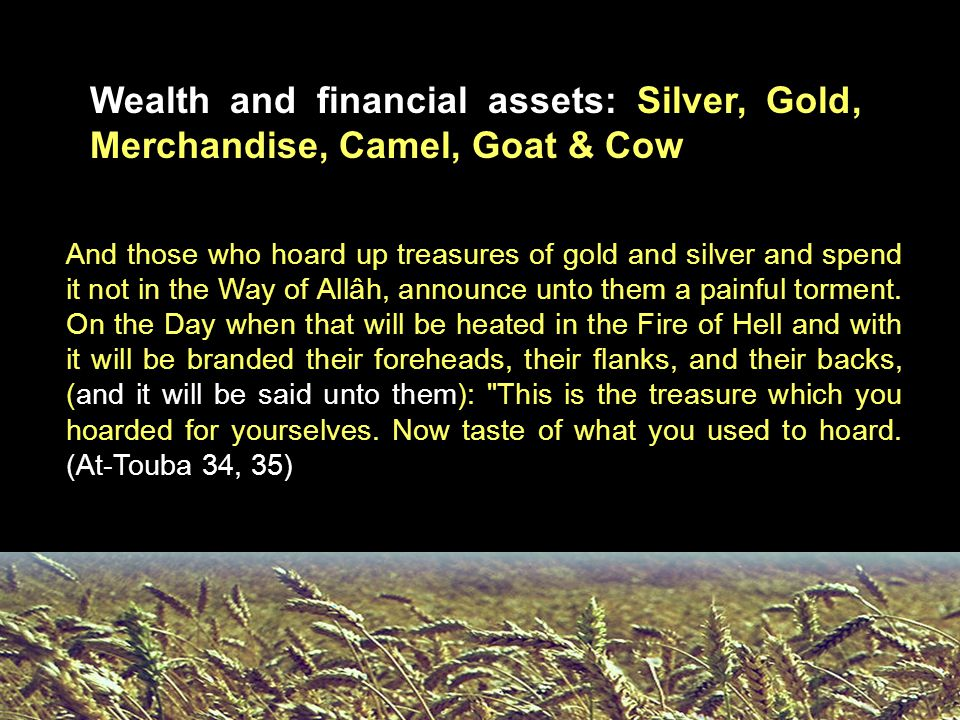 Wealth and financial assets: Silver, Gold, Merchandise, Camel, Goat & Cow And those who hoard up treasures of gold and silver and spend it not in the