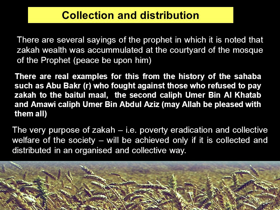 Collection and distribution There are several sayings of the prophet in which it is noted that zakah wealth was accummulated at the courtyard of the m
