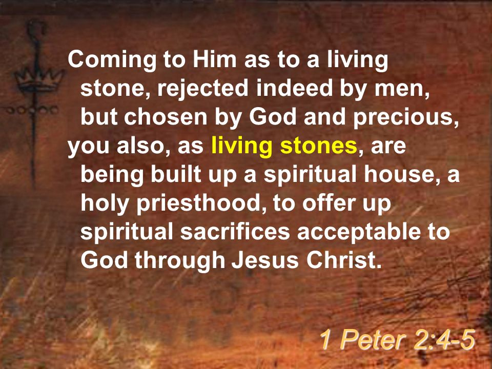Coming to Him as to a living stone, rejected indeed by men, but chosen by God and precious, you also, as living stones, are being built up a spiritual house, a holy priesthood, to offer up spiritual sacrifices acceptable to God through Jesus Christ.
