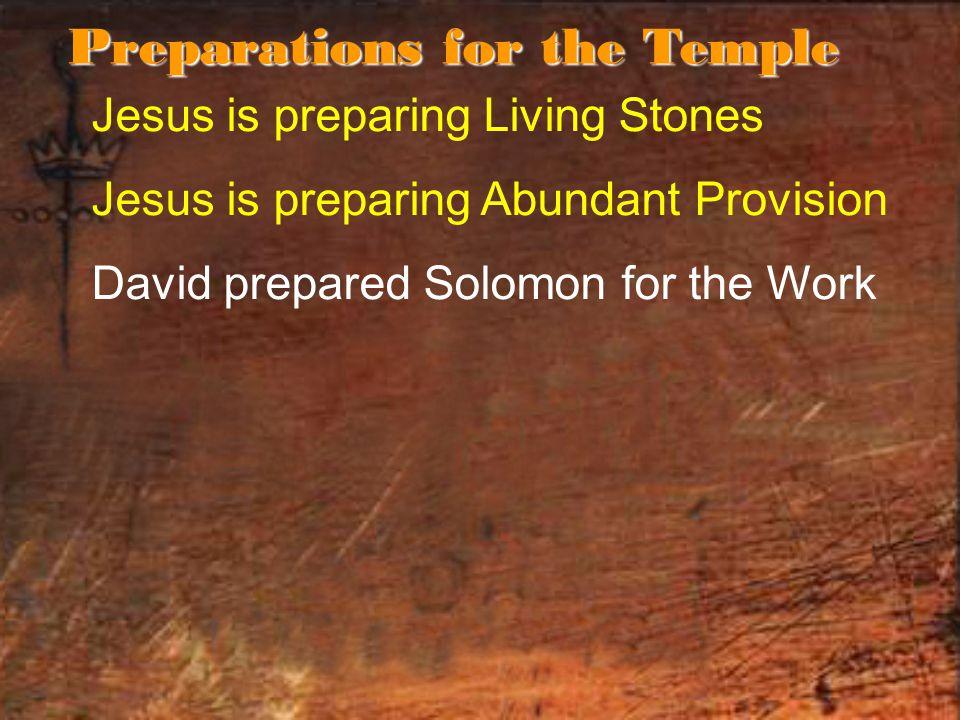 Jesus is preparing Living Stones Jesus is preparing Abundant Provision David prepared Solomon for the Work Preparations for the Temple