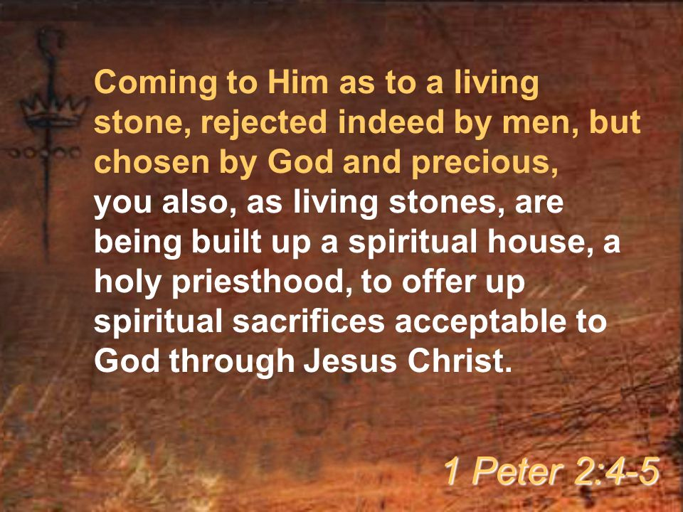 Coming to Him as to a living stone, rejected indeed by men, but chosen by God and precious, you also, as living stones, are being built up a spiritual
