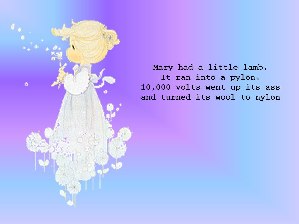 Mary had a little lamb. It ran into a pylon.