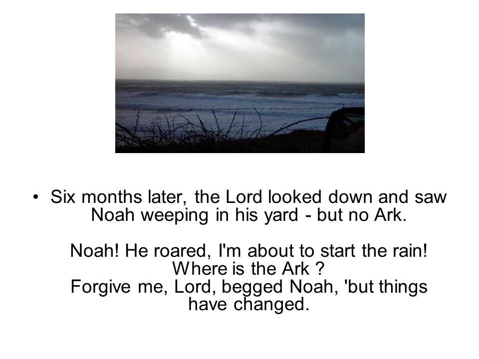 Six months later, the Lord looked down and saw Noah weeping in his yard - but no Ark.